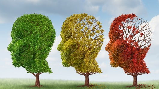 New hope for treatment of Alzheimer's disease - neuroinnovations