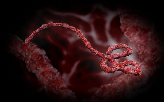 University researchers to test whether Ebola survivors' blood can provide new treatment - healthinnovations