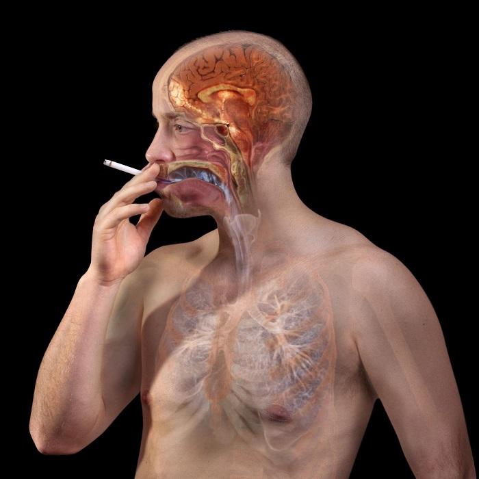 TSRI scientists design nicotine vaccine that provokes robust immune response - healthinnovations