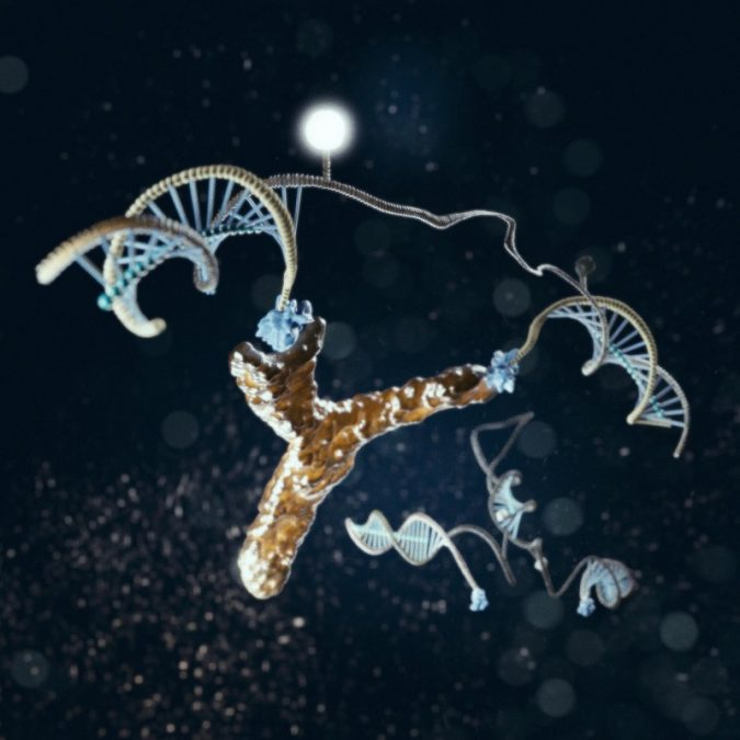 """New research may revolutionize the slow, cumbersome and expensive process of detecting the antibodies that can help with the diagnosis of infectious and auto-immune diseases such as rheumatoid arthritis and HIV. An international team of researchers have designed and synthesized a nanometer-scale DNA """"machine"""" whose customized modifications enable it to recognize a specific target antibody. Their new approach, which they described this month in Angewandte Chemie, promises to support the development of rapid, low-cost antibody detection at the point-of-care, eliminating the treatment initiation delays and increasing healthcare costs associated with current techniques. The light-generating DNA antibody detecting nanomachine is illustrated here in action, bound to an antibody.  Credit: Marco Tripodi."""