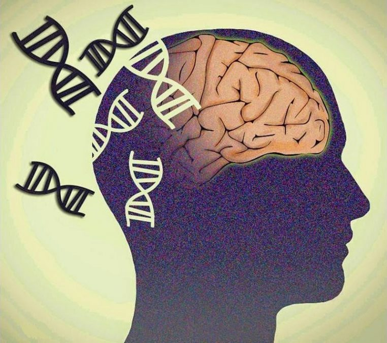 A new recessive disease identified - neuroinnovations
