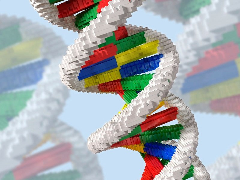 Misregulation of DNA building blocks associated with the development of colon cancer - healthinnovations