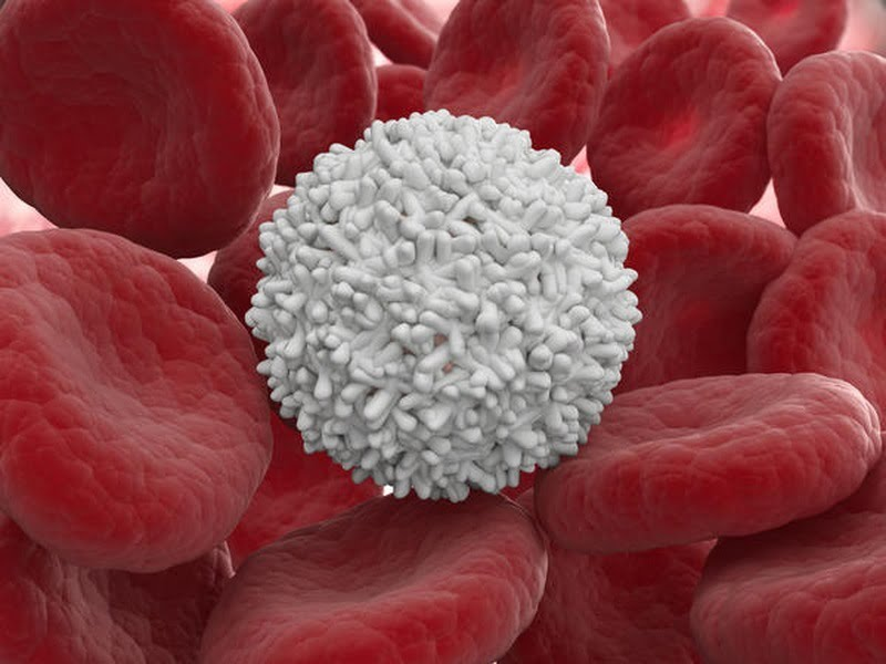 New class of molecules play key role in influencing the immune system -healthinnovations