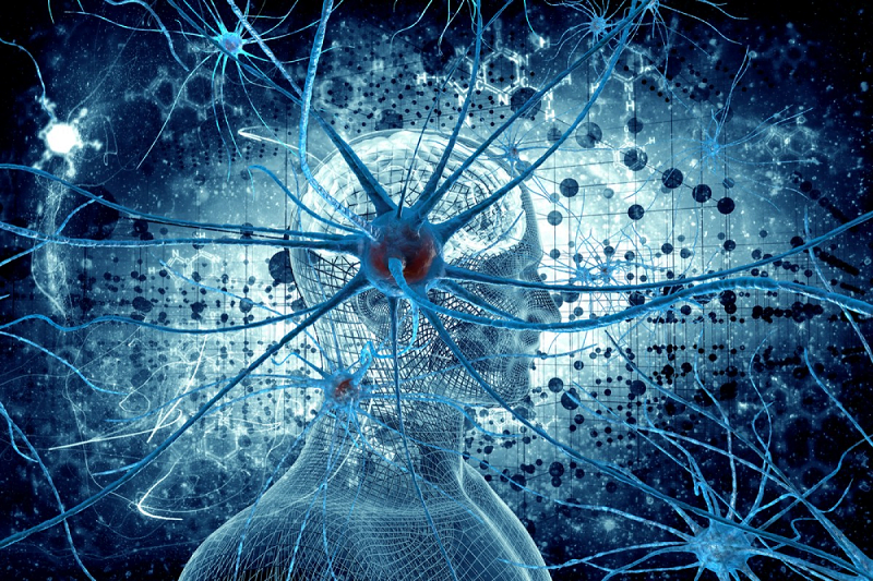 neuro-chip-records-brain-cell-activity-neuroinnovations