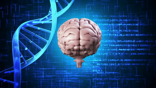 study-identifies-2-new-genes-responsible-for-alzheimers-disease-among-african-americans-neuroinnovations