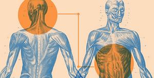ft-gut-second-brain-manual-body-regulation-healthnnovations-twitter
