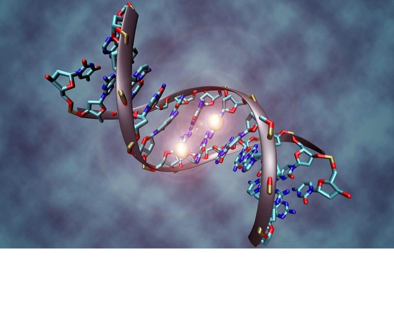 Researchers led by UC San Diego develop a non-invasive blood test capable of detecting circulating tumor DNA methylation to identify whether a person has one of the five most prevalent forms of cancers, up to four years before diagnosis. The team states their diagnostic can detect cancer by targeting a limited number of genomic regions aberrantly methylated across different cancer types, allowing it to be used as an inexpensive cancer screen from only a single vial of blood, unlike the more costly ctDNA which works by identifying a legion of inconsistent mutations.